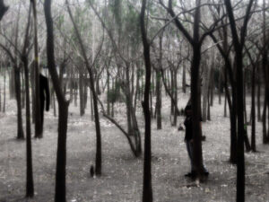 slenderman_in_the_forest_by_shizuriiku-d64y5q9