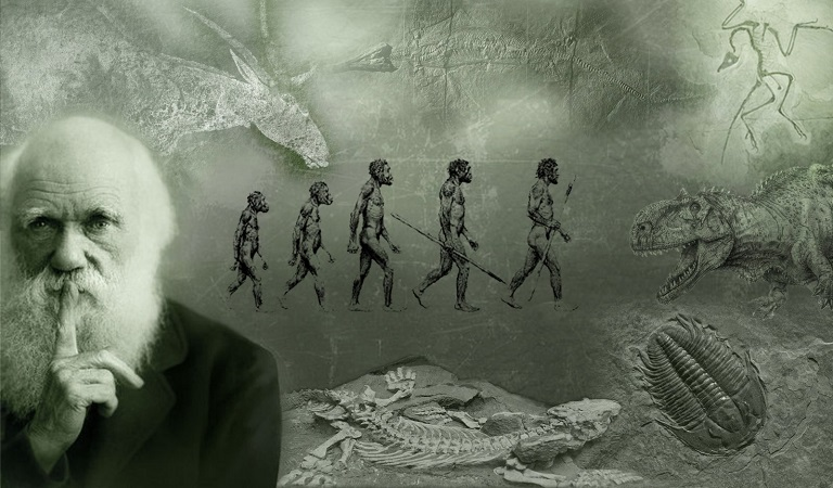 The darwin wars paranoia magazine