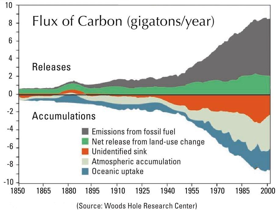 carbon_flux