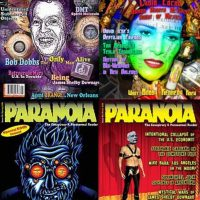an introduction to the issue of paranoia A weird refers to the oddness/ eccentricity of paranoid, schizoid and schizotypal  pds b wild refers to the emotional and erratic nature of the cluster b disorders,.