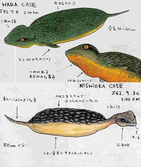The PARANOIA Cryptid Files: The Tsuchinoko