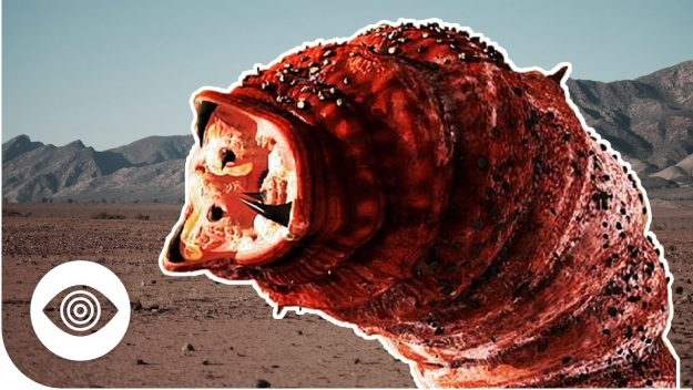 The PARANOIA Cryptid Files: The Mongolian Death Worm